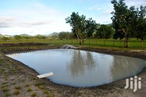 Earthen Ponds Construction | Farm Machinery & Equipment for sale in Greater Accra, Achimota