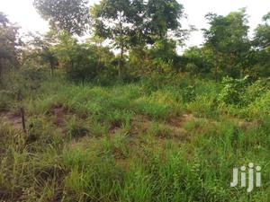 Farm Land for Sale (5,000 Acres) | Land & Plots For Sale for sale in Brong Ahafo, Kintampo North Municipal