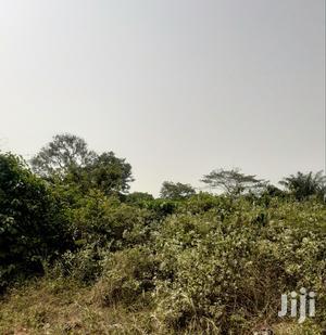 2 Acres of Farm Land at Juaben | Land & Plots For Sale for sale in Ashanti, Ejisu-Juaben Municipal