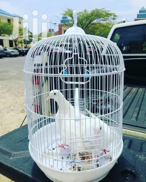 Metal Bird Cage | Pet's Accessories for sale in Greater Accra, Accra Metropolitan