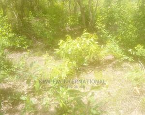 1,000 Acres of Farmland for 25 Yrs Lease or More | Land & Plots for Rent for sale in Brong Ahafo, Kintampo North Municipal