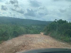 10 Acres of Farm Land at Tinkon Konko Around Koforidua | Land & Plots For Sale for sale in Eastern Region, New-Juaben Municipal