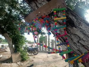 Parrot/Birds Toys | Pet's Accessories for sale in Greater Accra, Tema Metropolitan