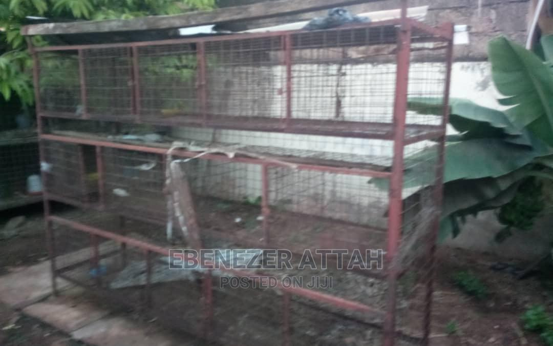 14 Rooms Grasscutter and Rabbit Cage