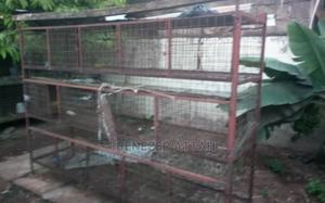 14 Rooms Grasscutter and Rabbit Cage | Pet's Accessories for sale in Greater Accra, Madina