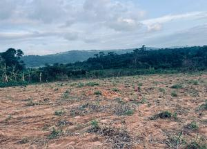 Titled Acres of Farm Land at Aburi | Land & Plots For Sale for sale in Eastern Region, Akuapim South