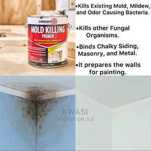 Mold Killing Primer | Building Materials for sale in Greater Accra, North Industrial Area