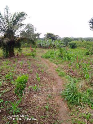 Plot of Land for Sale at Sokoban Bedaase | Land & Plots For Sale for sale in Ashanti, Kumasi Metropolitan