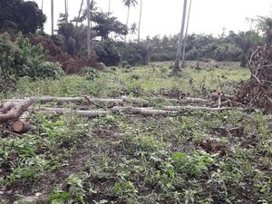Acres of Farm Land for Lease | Land & Plots for Rent for sale in Central Region, Awutu Senya East Municipal