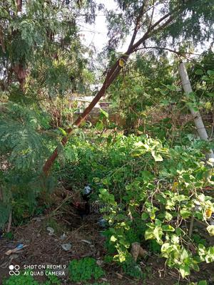 Land for Rent at Gbawe Blue Cross | Land & Plots for Rent for sale in Gbawe, New Gbawe