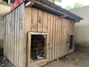 Big Two-In-One Dogs Pen or Kennel | Pet's Accessories for sale in Greater Accra, Ablekuma