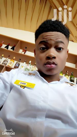 Restaurant Bar CV   Restaurant & Bar CVs for sale in Greater Accra, Dansoman