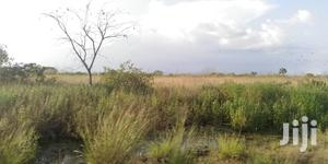 10.000 Acres of Land for Lease | Land & Plots for Rent for sale in Volta Region, Ho Municipal