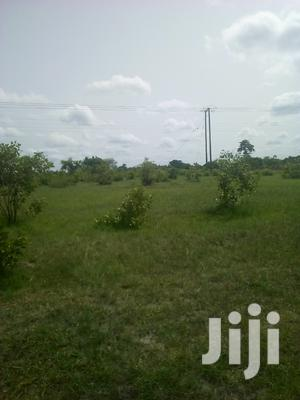 50.000 Acres of Farm Land for Sale | Land & Plots For Sale for sale in Volta Region, Ho Municipal