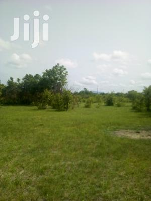 15.000 Acres of Farmland | Land & Plots for Rent for sale in Eastern Region, Akuapim South