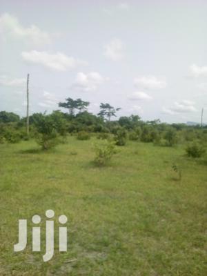 7000 Acres of Farm Land for Sale | Land & Plots For Sale for sale in Volta Region, Ho Municipal