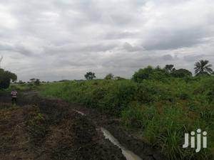 Farm Land For Long Lease | Land & Plots for Rent for sale in Eastern Region, Asuogyaman