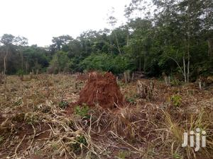 We Fivety Acres Farm Land for Sale at Akropon Akwuapen | Land & Plots For Sale for sale in Greater Accra, Accra Metropolitan