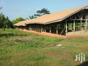 6 Acres Of Land With Poultry Farm For Sale At Atwimatrabuom | Land & Plots For Sale for sale in Ashanti, Kumasi Metropolitan